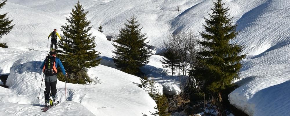 Vertical Côtière